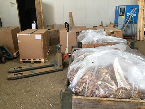 Europol kertoi maanantaina kukistaneensa laajan tupakkaliigan. Tiedotteen yhteydessä julkaistussa kuvassa ei ollut kuvatekstiä.