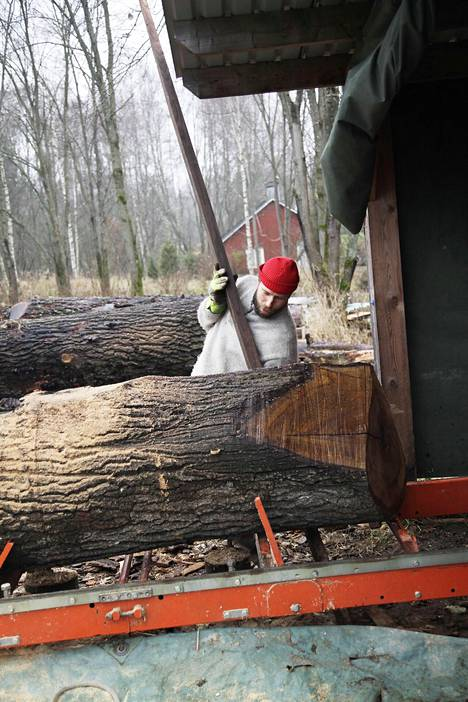 Salmisen pöytä valmistuu puun omassa, luonnollisessa tahdissa. Puu on valmis työstettäväksi hitaan kuivumisen ja eri työvaiheiden jälkeen aikaisintaan noin viiden vuoden kuluttua.