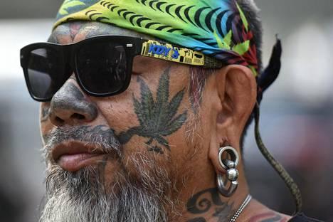 Hamppukasvin poskeensa tatuoinut aktivisti puolusti kannabiksen laillistamista Bangkokissa marraskuussa.