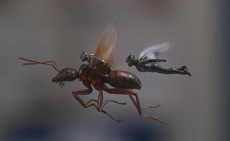 Ant-Man (vas.) kutistuu supervoimansa ansiosta napin painalluksella muurahaisen kokoiseksi. Ampiaisnainen Wasp on uusi hahmo miniatyyrisupersankarielokuvien sarjassa.