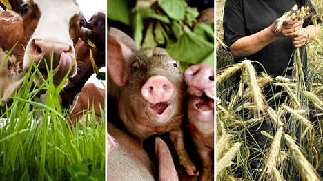 Philip Lymbery ehdottaa, että maatalous voitaisiin saada kestävämmäksi muun muassa näin: Annetaan lehmien laiduntaa ja syödä nurmea, vähennetään ruokahävikkiä ja ruokitaan sikoja ihmisten ruoantähteillä ja kannustetaan viljelijöitä vuoroviljelyyn ja sekatiloihin.