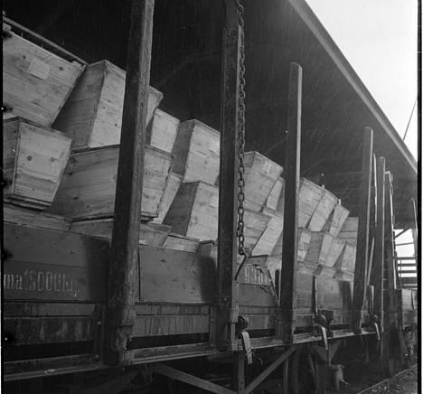 SA-kuvan kuvatekstin mukaan kuvassa on KEK:sta lähteviä arkkuja rautatievaunussa Torniossa 1944.