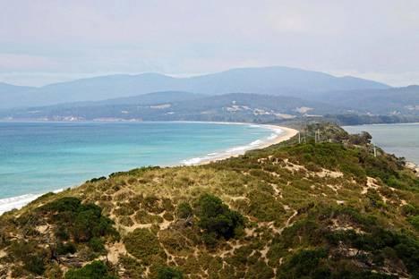 Brunyn saarella pääsee meriretkille, joilla voi nähdä esimerkiksi valaita, delfiinejä ja hylkeitä.