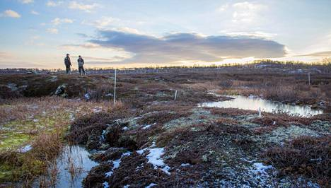 Yhteisverkko perustettiin kattamaan Pohjois- ja Itä-Suomen alueet, joissa Dna:lla ja Soneralla ei ollut aikaisemmin kattavaa 4g-verkkoa. Lapin osalta verkko valmistui alkuvuonna.