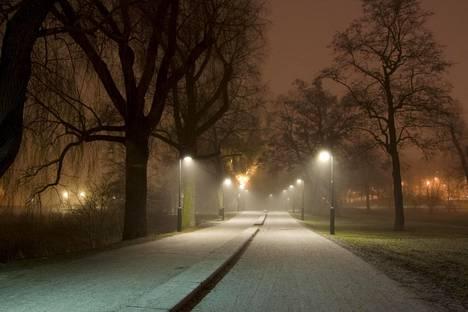 Hesperian puistossa tapahtui syksyllä 2015 huomiota herättänyt raiskaus.