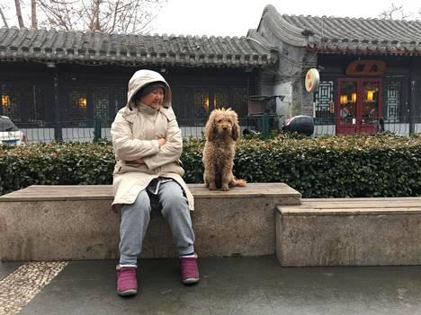 Wei Zhigang, 62, istuskeli koiransa Wai Wain kanssa hutong-kortteleiden kupeessa Pekingissä torstaina. Kun Wei oli lapsi, koiran omistaminen oli Kiinassa kiellettyä.