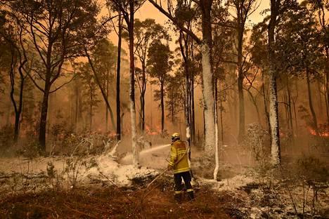 Päästöjä ovat lisänneet muun muassa poikkeuksellisen laajat maastopalot. Palomies sammutti metsäpaloa Jerrawangalan lähellä Australiassa viime tammikuussa.