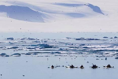 Melojia jäiden seassa Pohjoisella jäämerellä Kanadan Nunavutissa heinäkuussa. Havaintojen mukaan pohjoisen napajään kesäajan pinta-ala on pienentynyt viime vuosina.