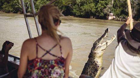 Turistit seurasivat krokotiilien hyppyjä veneretkellä Adelaide-joella Australiassa.