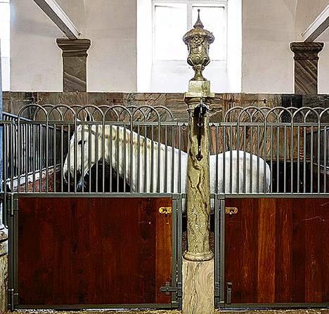 Vallan linnakkeen Birgitte Nyborg kulki usein kuninkaallisten tallien käytävillä. Kunigattaren hevoset ruskuttavat kauraa seinän takana.