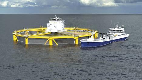 Havainnekuva kertoo, miltä norjalaisen Salmar-yrityksen avomerelle suunniteltu kalanviljelylaitos voisi näyttää.