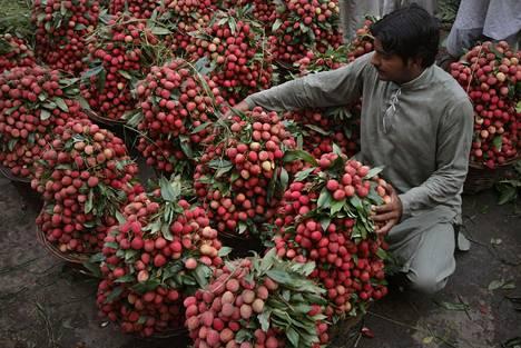 Litsejä eli kiinanluumuja myynnissä pakistanilaisella torilla.