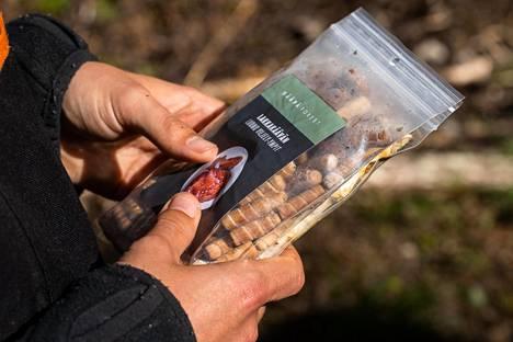 Kääpäsienten viljely alkaa ympeistä, joihin on istutettu sienirihmastoa.