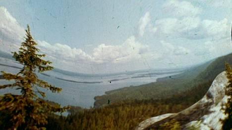 Joel Karppanen, Luontoelokuva, 2021, still-kuva.