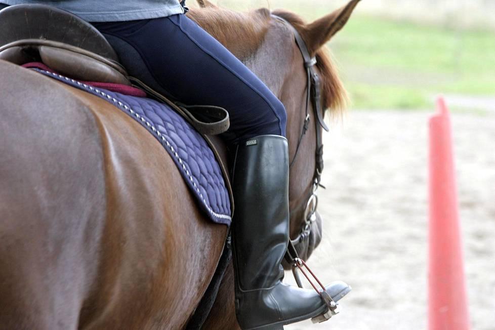 Ratsastajan paino vaikuttaa hevosen suoritukseen esteratsastuksessa.