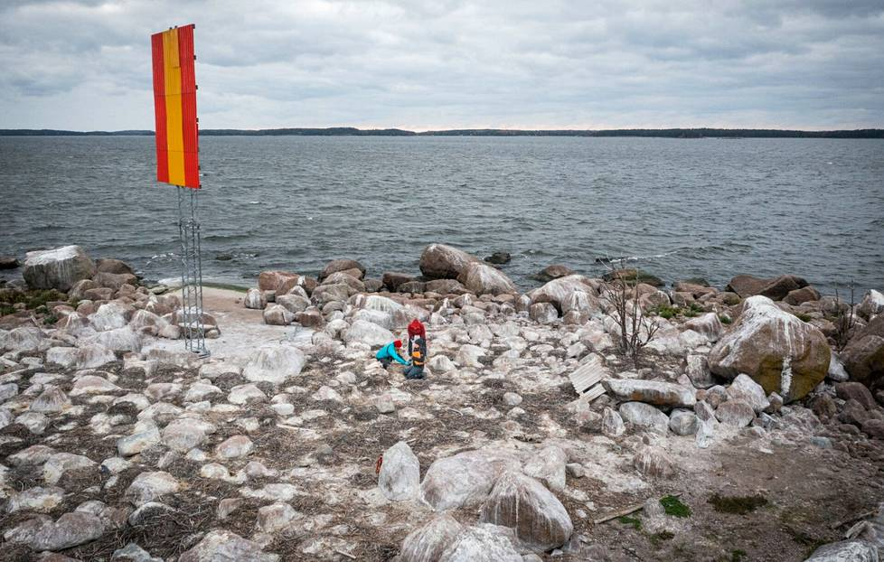 The islet off Kotka has a total of about 175 cormorant nests.