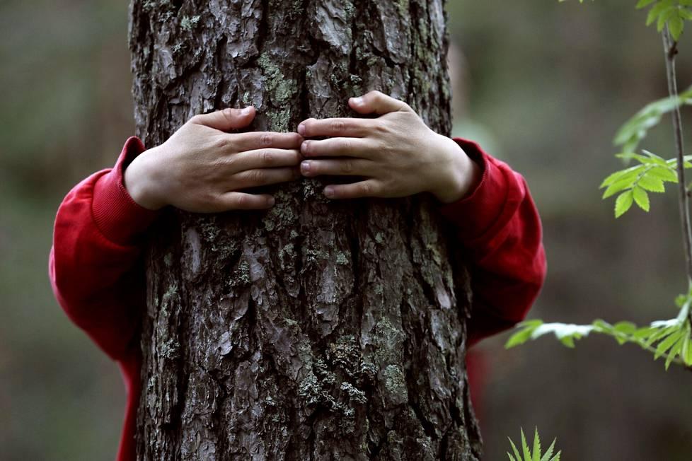 Metsä muodostaa monipuolisen oppimisympäristön.