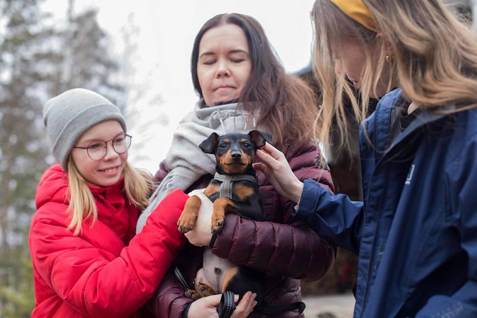 Pokelan perheessä Luumäellä asuu nyt kääpiöpinseripentu Milo. Kuvassa punatakkinen Venla Pokela, äiti Katriina Pokela ja sinitakkinen Ella Pokela