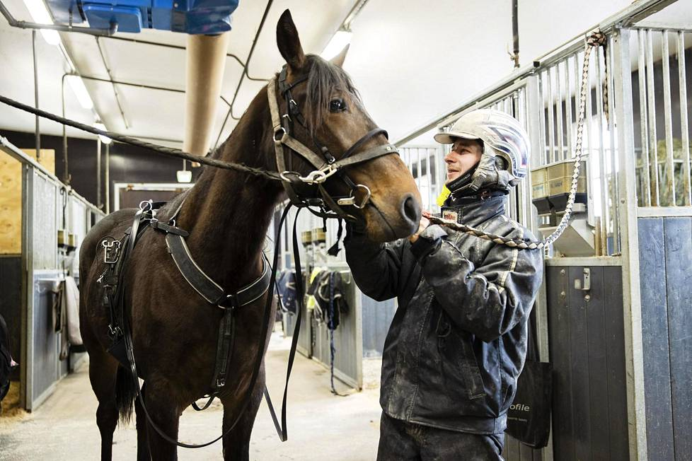 Iikka Nurmonen harjoituttaa hevosiaan jokaisena päivänä. Kaksivuotias lämminveritamma Incredible Comet saa lenkin kolme kertaa viikossa Jokimaan raviradalla Lahdessa.