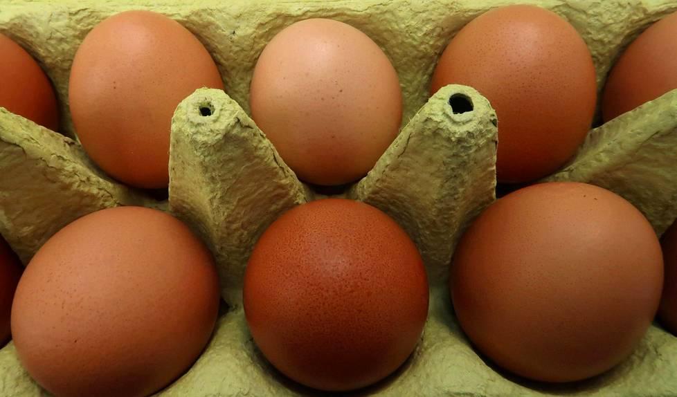 Kuinka suuri on Castros munaa