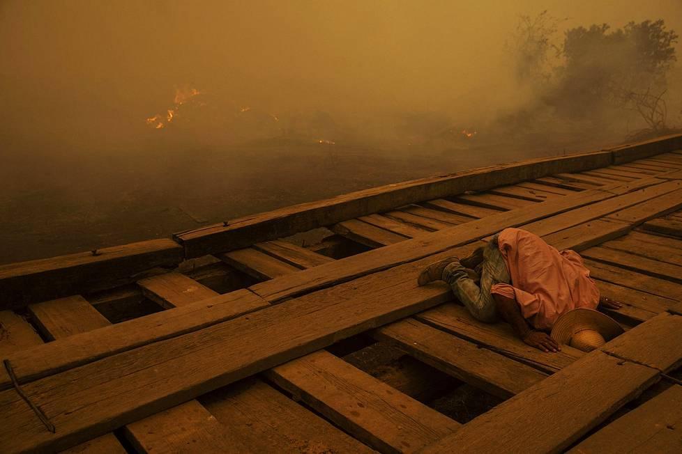 Vapaaehtoiset etsivät kyteviä kohtia puisten siltojen alta. Ympäristöaiheiset sarjat, 1. palkinto.