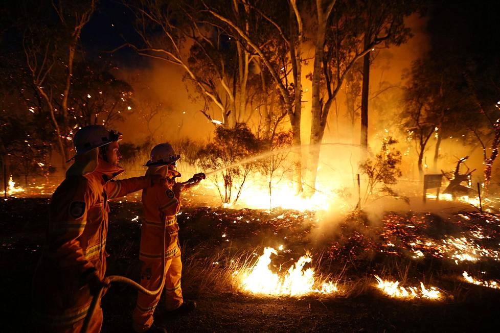 Palopelastajat sammuttamassa maastopaloa Sydneyn lähellä syyskuussa 2013.