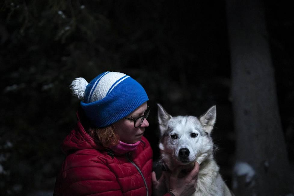 Koiristaan Kittilässä asuva Mari Mattila ei halua luopua, vaikka koronapandemia on vienyt huskylaumalta työn.