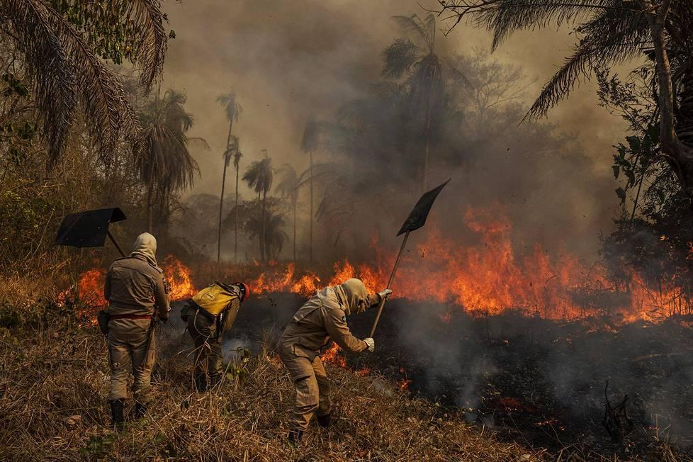 Maastopalot riehuivat Brasiliassa viime vuonna. Kuvassa palomiehet työskentelevät Pantanalin kosteikkoalueella. Ympäristöaiheiset sarjat, 1. palkinto.