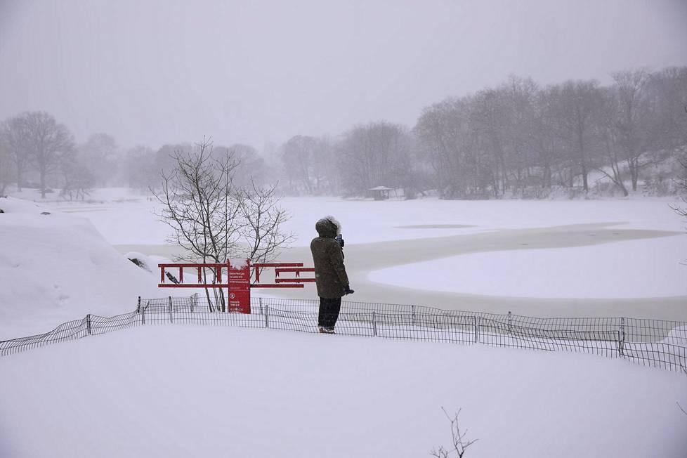 New Yorkin Central Parkin luminen maisema.