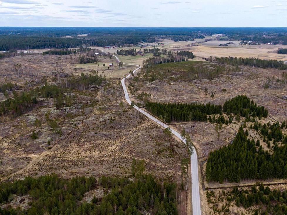 Hakkuualueet Kemiönsaaren Galtarbyssä osoittavat, että PEFC:n puitteissa voidaan tehdä varsin laajoja aukkohakkuita. Kuvassa jo vuosia sitten käsiteltyä metsäaluetta 3. toukokuuta 2021.