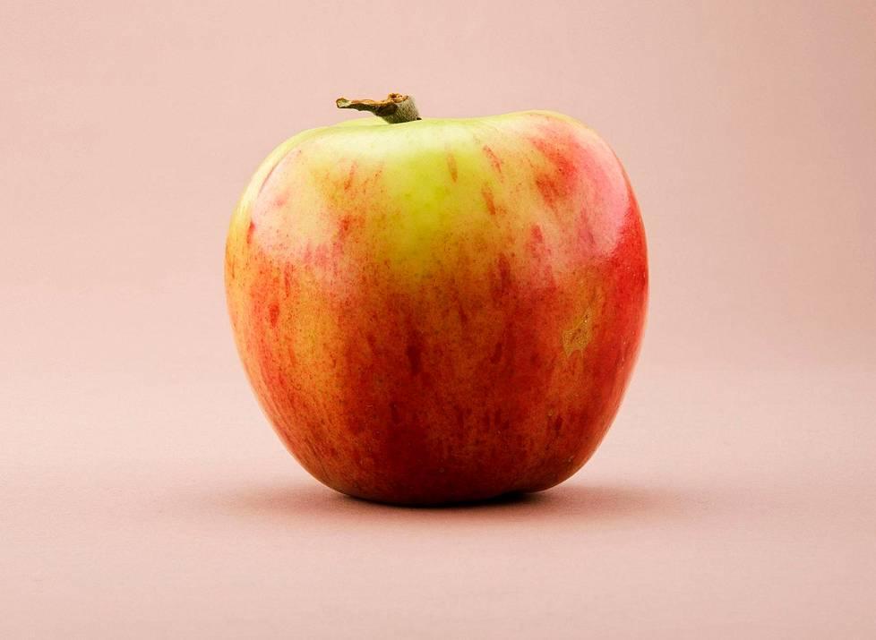 Huvitus-omena syntyi Korpelan torpan pihassa vuonna 1895.