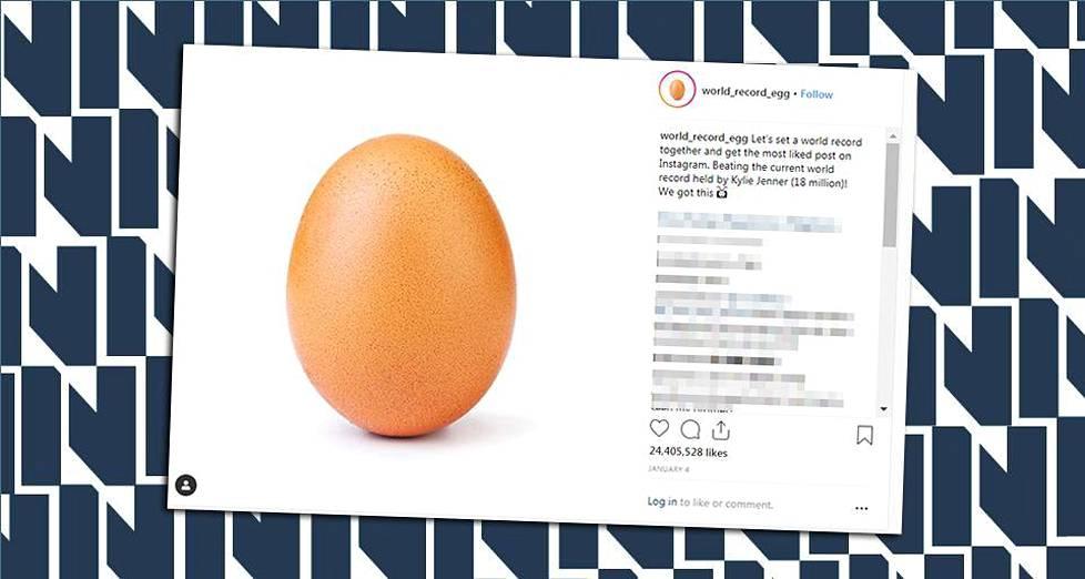 kuvia valkoista munaa