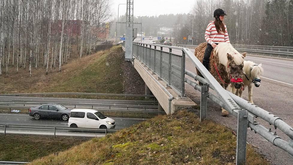 Ponit kulkevat rauhassa, vaikka alla jylisee Kehä III:n liikenne.