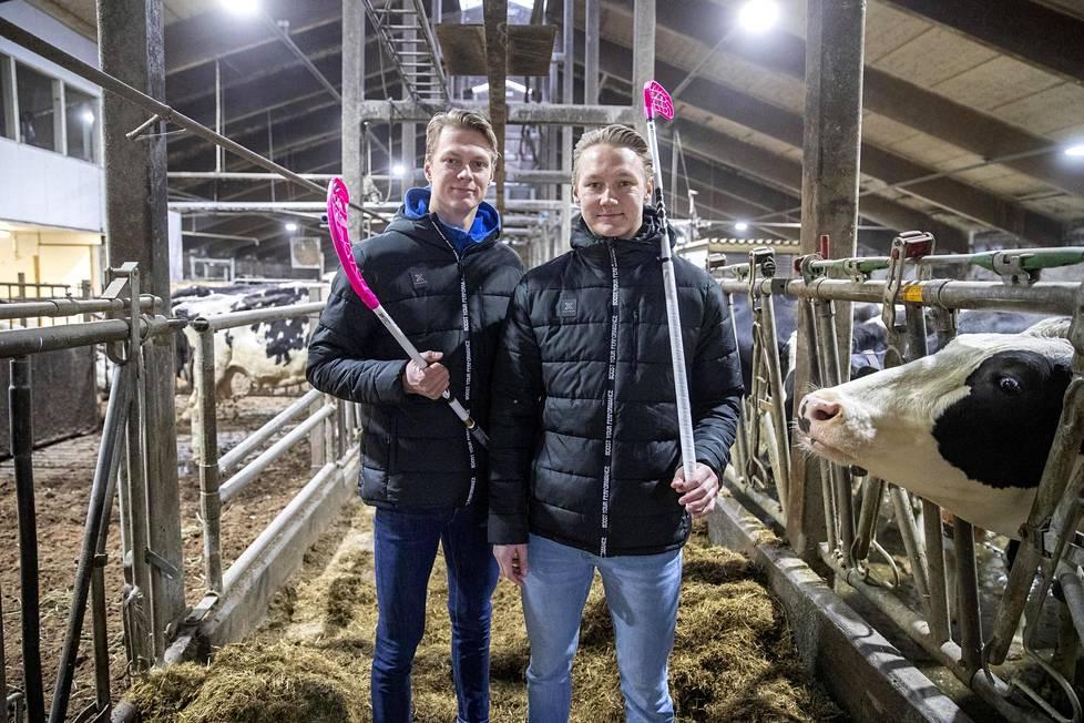 Päivisin Heikki (vasemmalla) ja Eero Vanhatalo huolehtivat miljoonan litran maitotilasta ja illat kuluvat salibandysalilla. Tunteja ei turhaan lasketa.