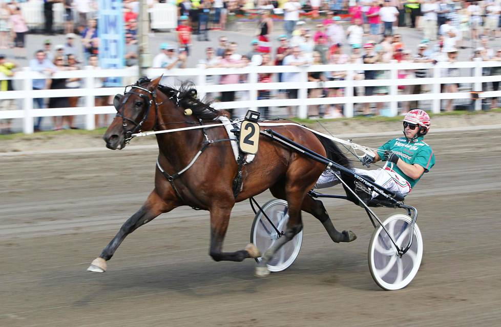 Ranch Kelly on yksi menestyneimpiä suomalaisravureita. Se on juossut muun muassa tammojen pitkän radan maailmanennätyksen.