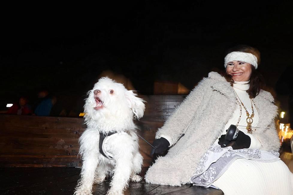 Nazwaa Salemin koira Iski hämmentyi ilotulituksista Kauppatorilla.