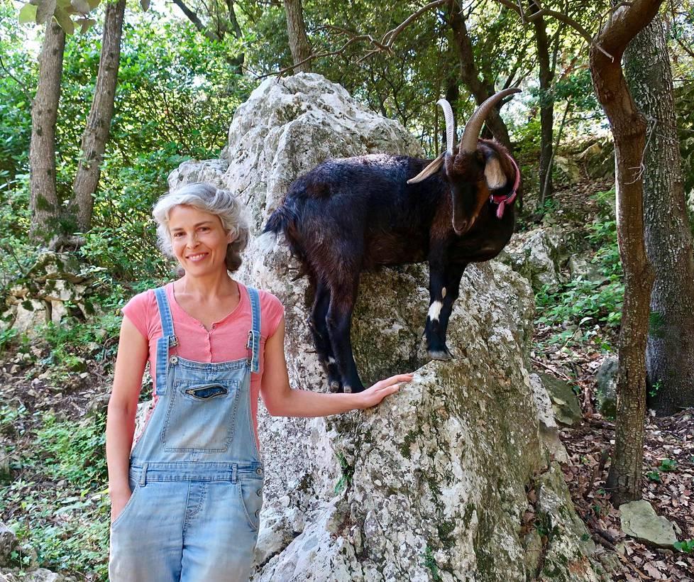 Blanca on yksi Björklundin kolmesta vuohesta. Ne antavat perheelle maitoa ja pitävät palovaarallista pusikkoa matalana.
