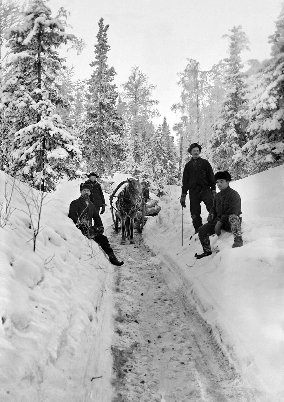 Savotassa kaadettuja tukkeja vedettiin hevosella niin sanottuja varsiteitä pitkin. Tukkirekeä varten jäädytettiin raiteet, mikä mahdollisti suuret kuormat. Niilo Kotila (vas.) ja Paavo Kotila istuvat lumipenkalla. Paavon takana seisoo Eino Kakko, hevosen vieressä Einon isä. Kuva on otettu 30-luvun loppupuolella.