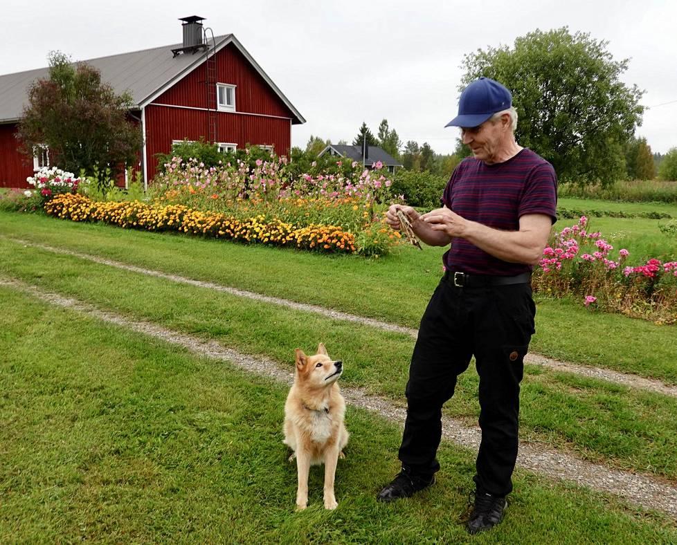 """Tapio Huovinen asuu vaimoineen mieluummin synnyintalossaan Hietajärvellä kuin Ämmänsaaressa palvelujen äärellä. Entiselle rajavartijalle pitää """"Huovisten kylässä"""" seuraa Jörö Huovinen."""