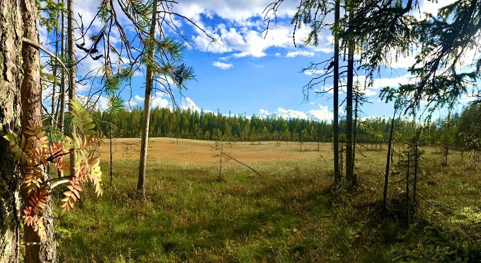Suomen vienalaiskyliä ympäröi karunkaunis kainuulainen eräluonto kangasmetsineen, järvineen ja soineen.