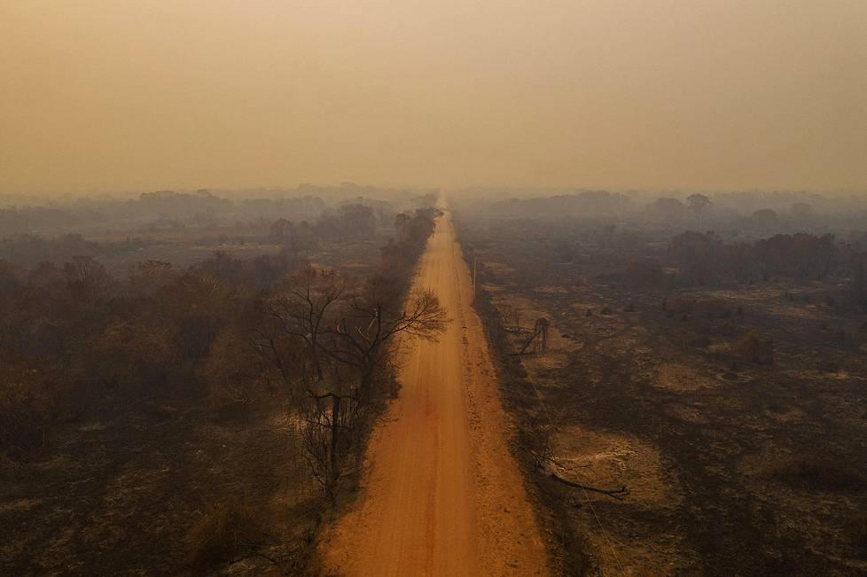 Pantanalin alue koki viime vuonna historiansa suurimmat tuhot. Yli neljä miljoonaa hehtaaria alueesta joutui maastopalon runtelemaksi. Ympäristöaiheiset sarjat, 1. palkinto.