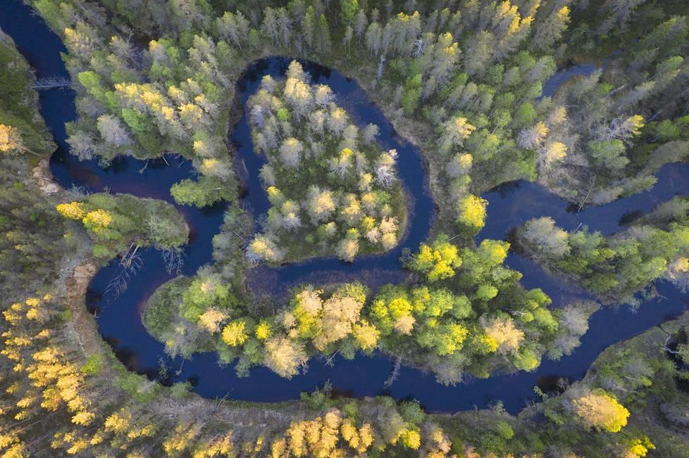 Suomunjoki Patvinsuon kansallispuiston rajalla.