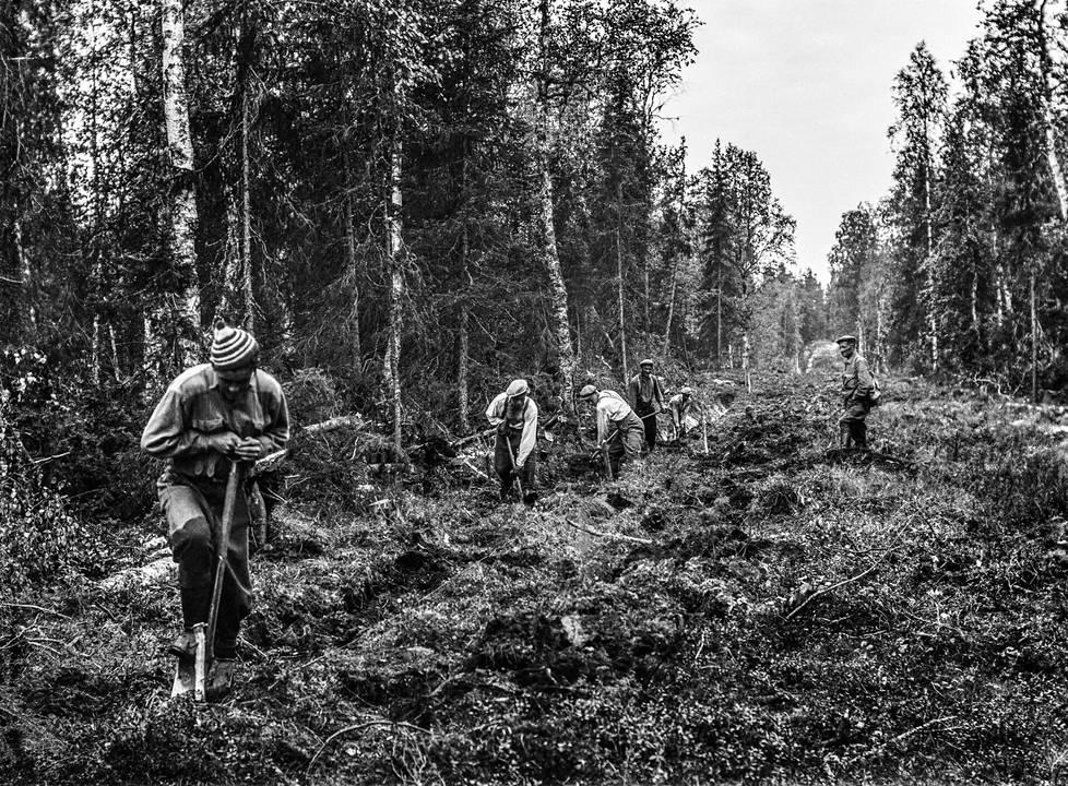 Asser Hirvonen (vas.) kaivoi lapiolla ojaa Kätkävaarassa todennäköisesti vuonna 1956. Tekeillä oli maantie.