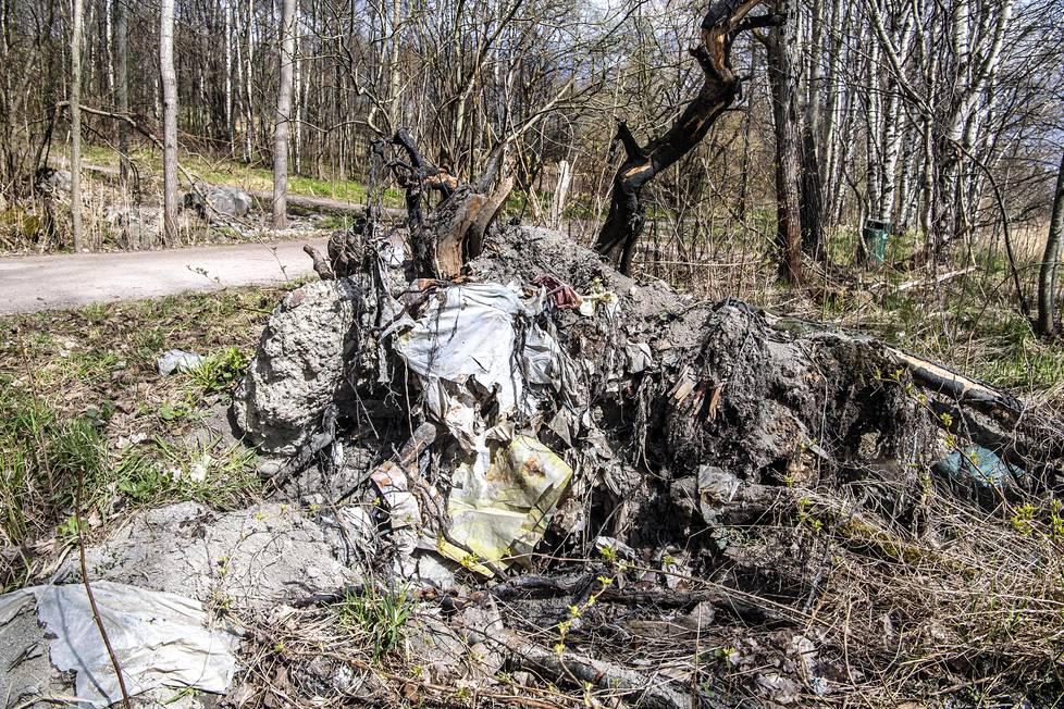 Kaatuneen puun juurakossa näkyy vanhoja muoviroskia.