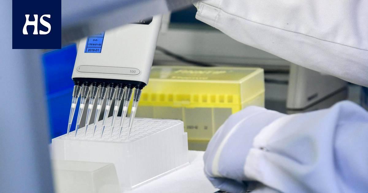 Koronavirus | Moni suomalainen on jo käynyt koronavirustestissä, mutta mitä testille oikeastaan tehdään? HS selvitti koko kymmenvaiheisen testausketjun