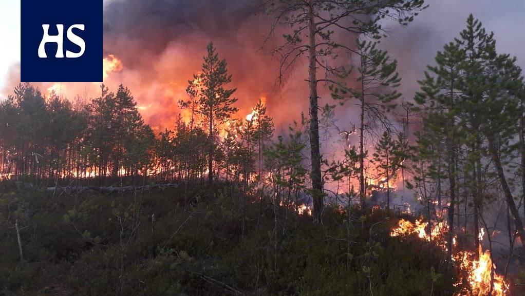 Siperian Metsäpalo